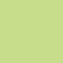 Färgat papper Rainbow A4 80 g klargrön 500/fp