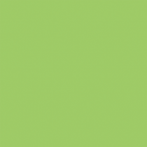 Färgat papper Rainbow A4 80 g grön 500/fp